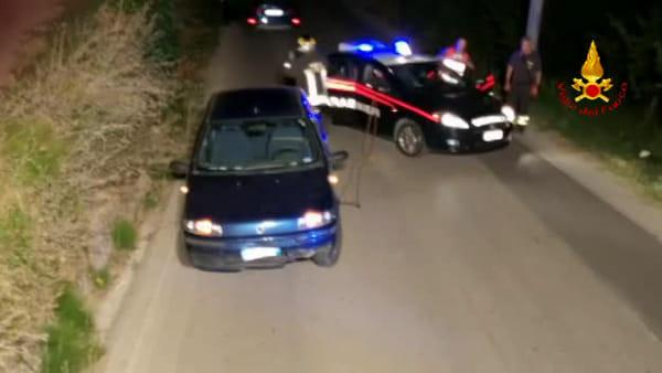 Cinghiale investito da un'auto: le immagini del salvataggio
