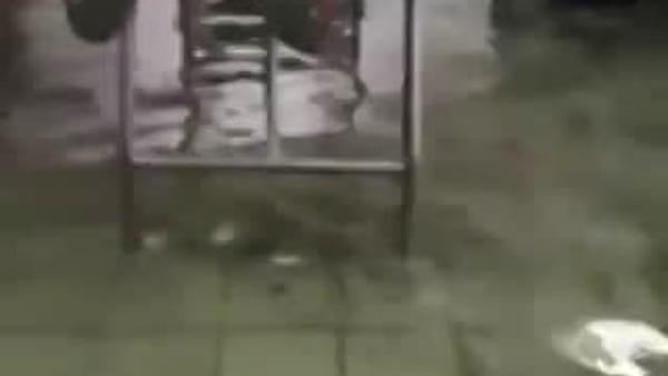 Spogliatoi del San Tommaso allagati, il video fa il giro del web
