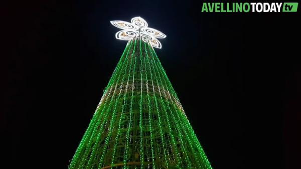 Iniziato il Natale ad Avellino, acceso il grande albero di piazza Libertà